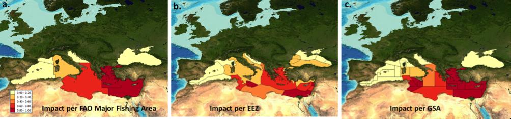 Pufferfish are invading the Eastern Mediterranean: BlueBRIDGE helped ...